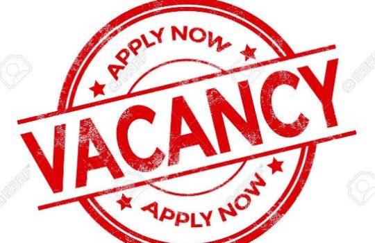 Lowongan Kerja Morowali Utara Terbaru Mei 2021 Minggu Ini